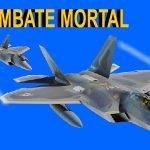 Combate mortal
