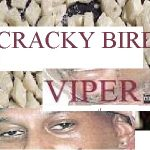 cracky bird
