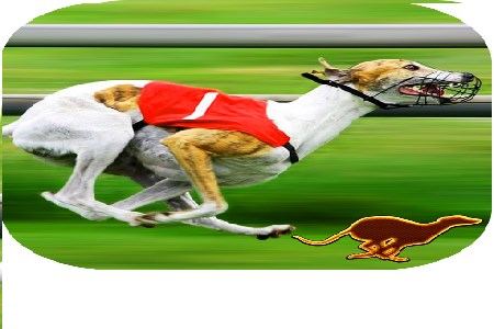Dog racing games betting odds online betting illegal in singapore