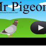 Mr Pigeon