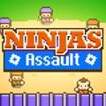 Ninjas Assault